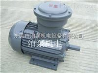 东莞 泊泵机电 厂家专卖 上海喜开特 防爆电机